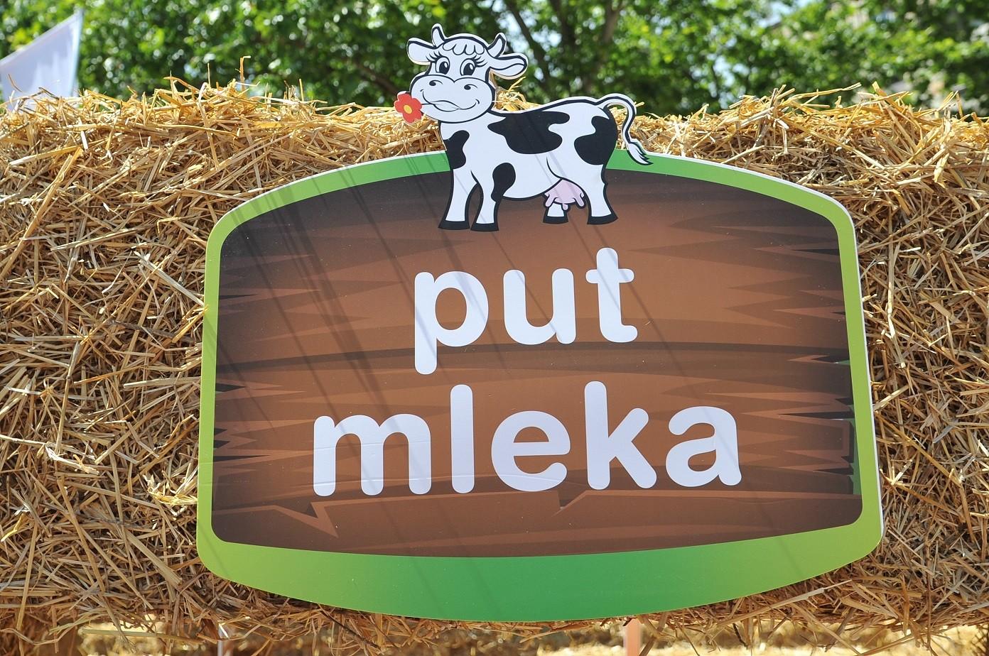 """Karavan """"Put mleka"""" moja kravica započeo putovanje kroz Srbiju"""