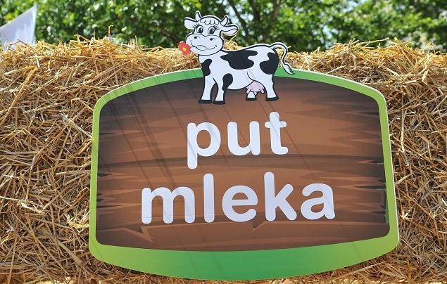 """Moja Kravica """"Put mleka"""" karavan u Novom Sadu"""