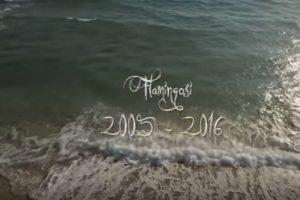 POSLUŠAJTE POSLEDNJE DVE PESME FLAMINGOSA (VIDEO)