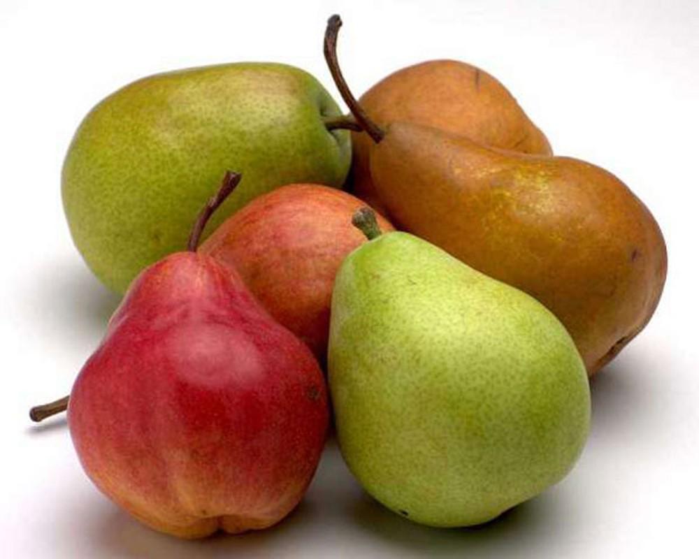 Savršen izvor hranljivih materija: Kruške regulišu šećer i čuvaju srce