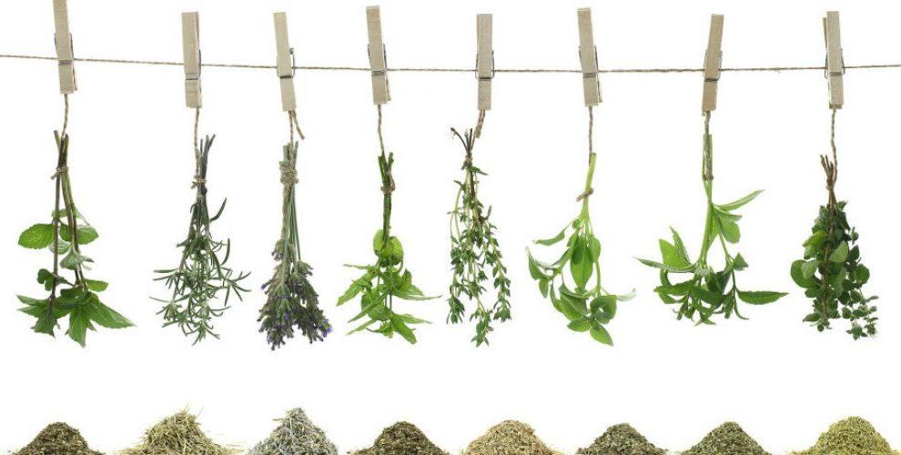Iskusni travar otkriva: Šta pomaže kod impotencije, a šta kod pijanstva?