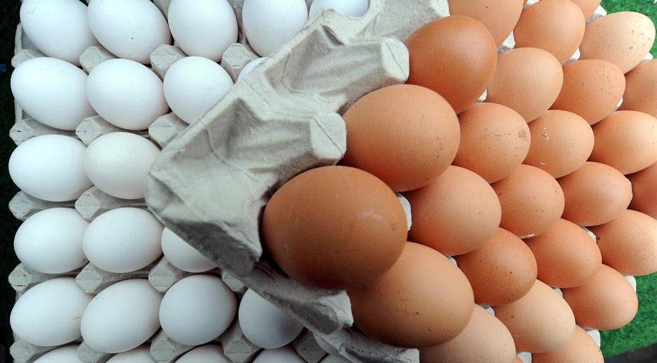 Šta znače oznake na ambalaži za jaja?