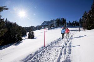 Zbog čega je šetnja po hladnom vazduhu najbolje što možete napraviti za sebe?