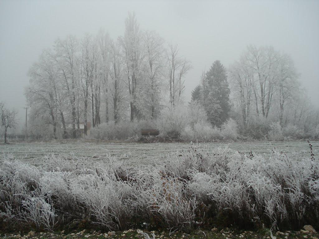 """""""Ledeno doba"""" u SAD: Strahuje se da će temeperature ići do 56 stepeni ispod nule"""