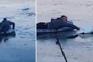 Ovo su naši heroji! Ušli su u zaleđeni Dunav i spasavali labuda (VIDEO)