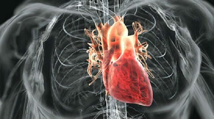 Pet znakova da imate problem sa srcem!
