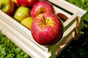 Neodoljiv dezert sa jabukama, orasima i čokoladom