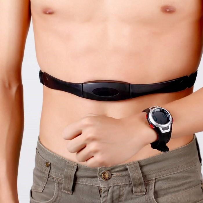 Puls, kondicija i životni vek