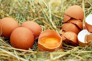 Budite zdravi cele godine uz univerzalni lek od jaja i meda!