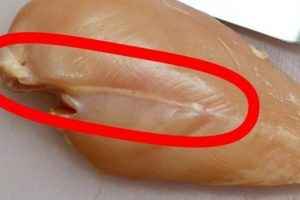 RIZIČNO! Da li ste videli ovu belu liniju na piletini? (Video)