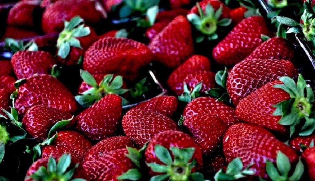 Uz jagode i jogurt izgubite višak kilograma!