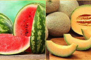 Dijeta: Dinja i lubenica su sve što je potrebno