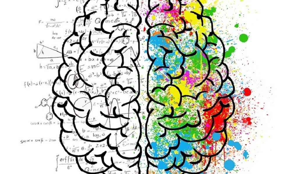 Ove namirnice poboljšavaju zdravlje mozga!