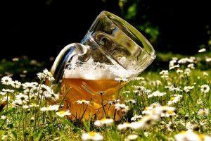 Pivo dijeta - san svakog muškarca i većine žena: Pijte i rešavajte se kilograma!