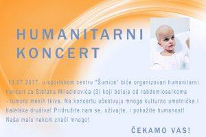 Humanitarni koncert za Stefana Miladinovića