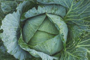 Devet namirnica koje su prirodni DIURETICI