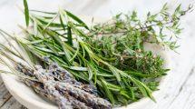 Ovih pet biljaka morate gajiti u svojoj kuhinji!