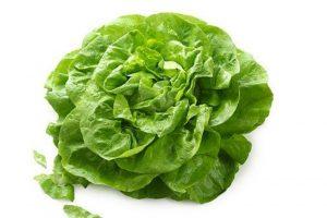 Efikasna dijeta sa zelenom salatom