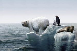 Klimatske promene prete da uniste Zemlju! Temperature dostizu najvise istorijske nivoe!