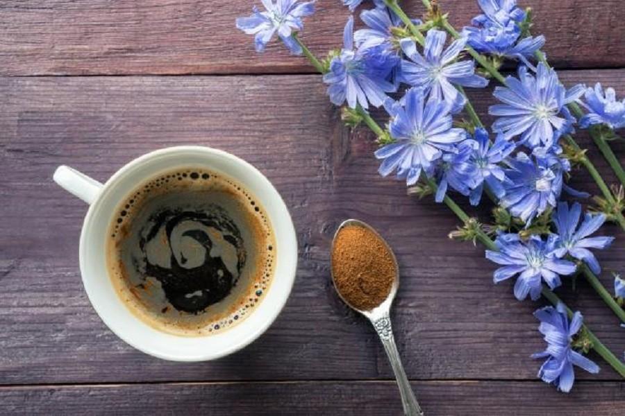 Ova biljka menja kafu i pomaže pri mršavljenju!