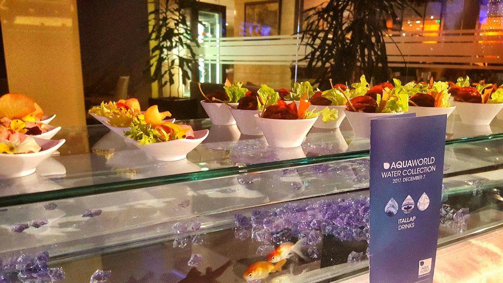 Usledio je pozdravni govor generalnog menadžera Aquaworld Resort Budapest hotela,gospodina Markusa Ernsta, koji je na iznenađenje prisutni govor održao iz bazena, bosih nogu, a sve kako bi na simboličan način ispričao priču o kvalitetu i temperaturi vode u ovo hotelu.