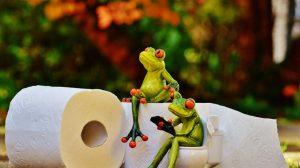 Čak 70 posto ljudi ne koristi toalet papir, a evo šta su ljudi koristili pre njegovog pronalaska?