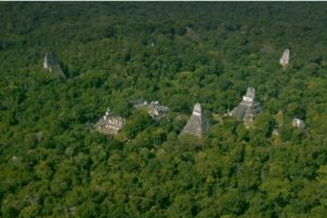 Pronađeno 60 000 građevina Maja ISPOD DŽUNGLE u Gvatemali!