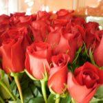 Sirup od RUŽE za tople dane