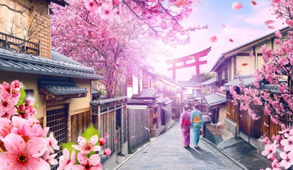 JAPAN: Trešnjin cvet u punom cvatu u Tokiju (VIDEO)