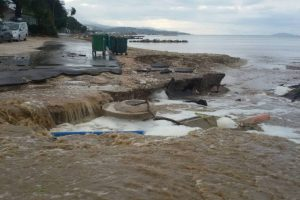 SRPSKI TURISTI U GRČKOJ OČAJNI! Automobili završili u moru, sobe popljavljene, a letovanje uništeno
