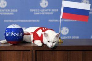 Mačor Ahil prognozira pobedu Rusije, dok lemur tipuje na Saudijsku Arabiju