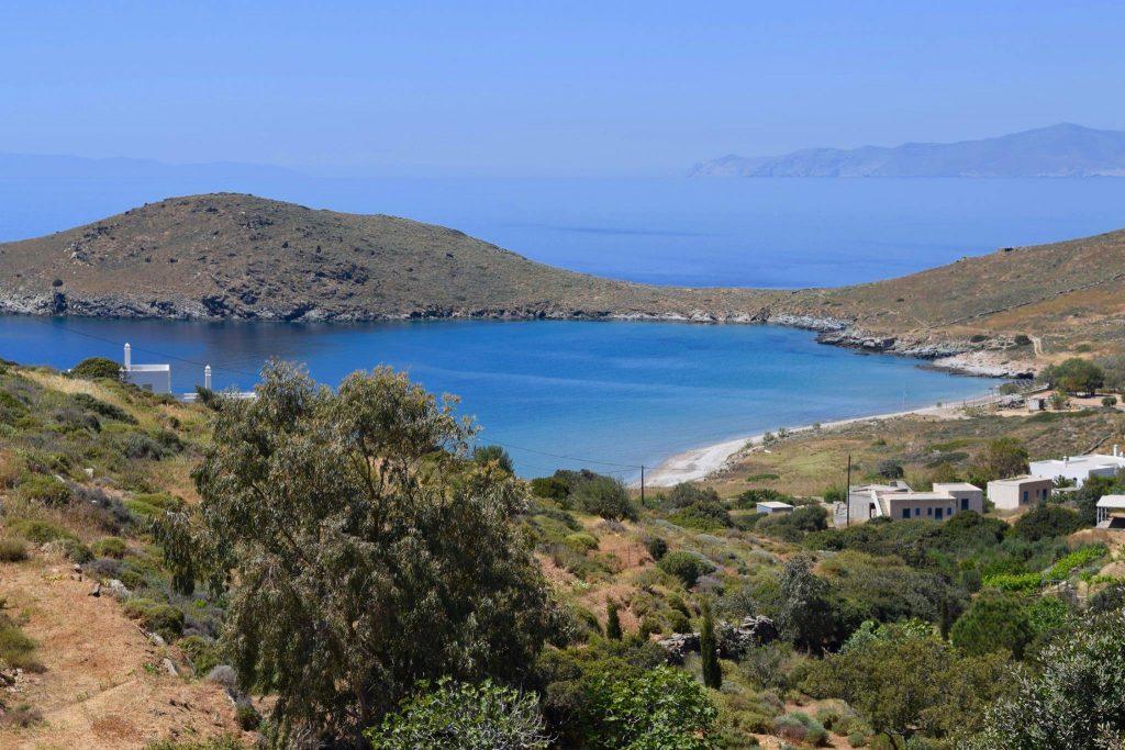 Posao iz snova nalazi se na prelepom grčkom ostrvu: Jedini uslov je da volite mačke jer će vam društvo praviti njih 55 (FOTO)