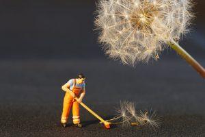 Najbolja mešavina za dezinfekciju i čišćenje kuće