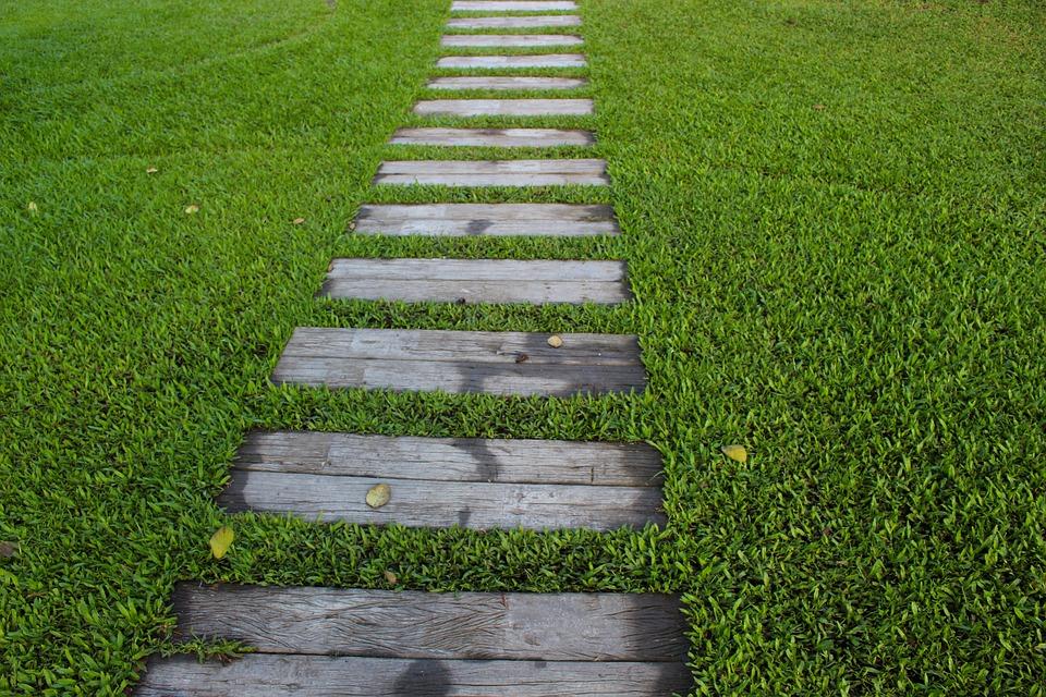 Želite lep travnjak u proleće? Saznajte kako zasnovati dobar travnjak!