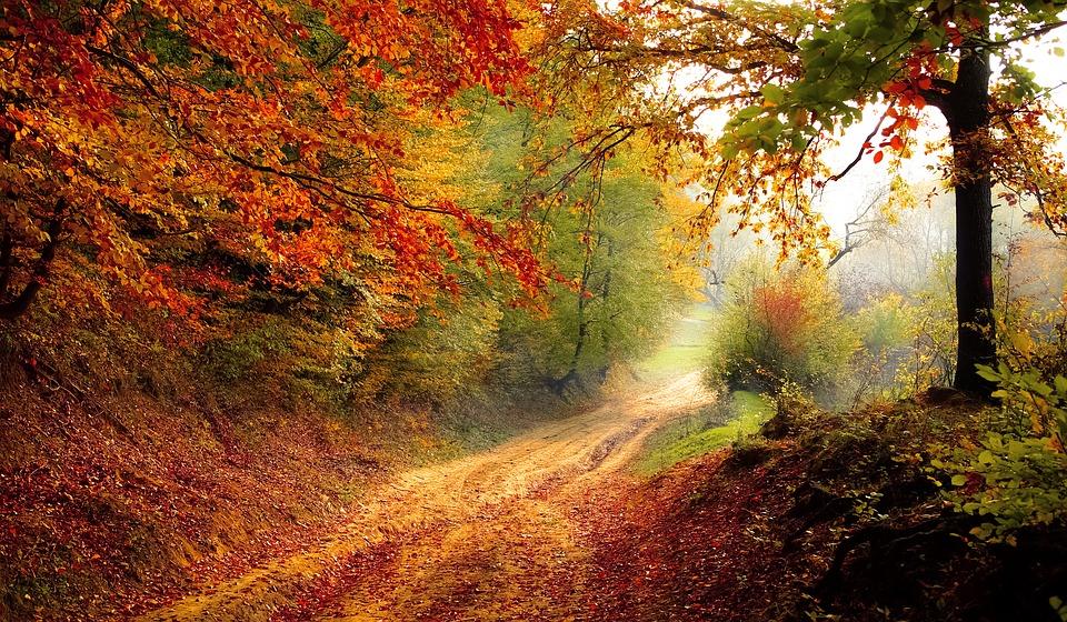 Svetske destinacije koje je najbolje posetiti tokom jeseni!