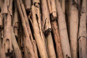 Prirodni lek od cimeta i meda: 6 bolesti koje leči ova moćna kombinacija!