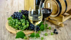 Svet vina u Portugalu!