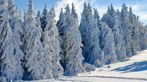 SKIJANJE na srpskim planinama moguće do nedelje 18. aprila!