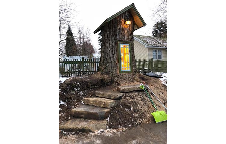 Ostaci stogodišnjeg drveta pretvoreni u malu biblioteku
