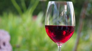 Najveća vinska ruta na svetu je u Južnoj Africi!