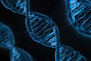 Otkriveni geni za duži život, smanjuju šansu za demenciju
