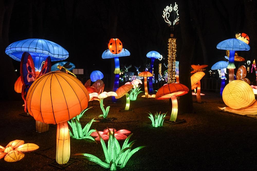 Zatvoren Kineski festival svetla