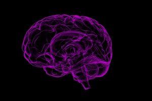 Naučnici napravili veštački mozak