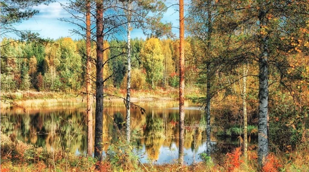 Posetite Finsku besplatno i naučite da budete srećni