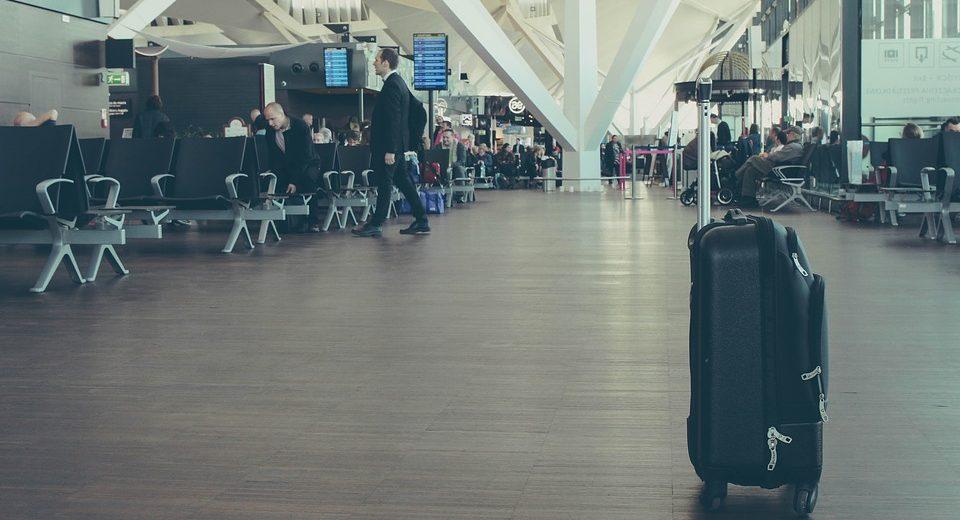 Stenice su realna pretnja! Za svaki slučaj, očistite kofer posle putovanja!
