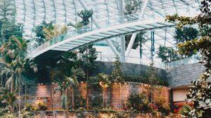 Novo svetsko čudo od aerodroma! Ima vodopad i mini džunglu!