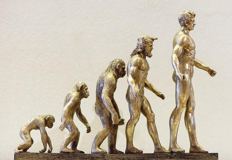 Da li je ovo kraj evolucije? Skraćuje nam se životni vek, i ne samo to