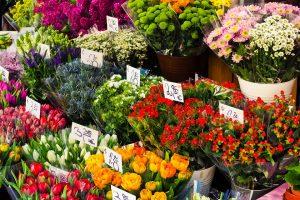 okružene cvećem