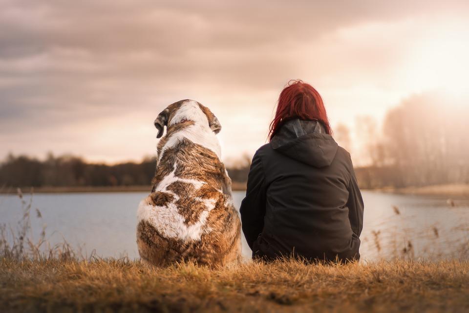 5 stvari koje psi mogu da nanjuše i osete kod ljudi!