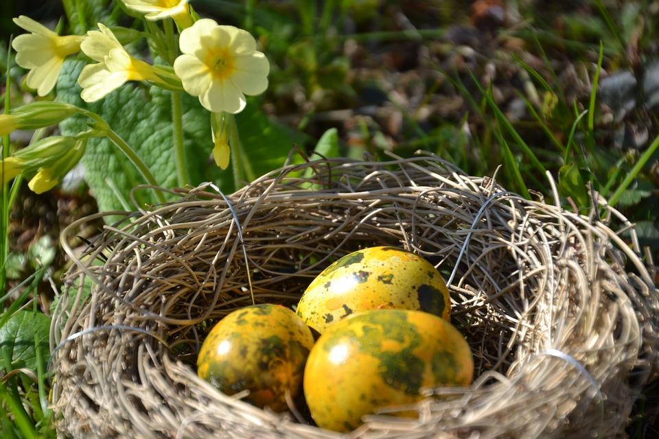 Kako da ofarbate jaja prirodnim bojama?